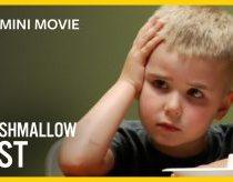 Kids Marshmallow Experiment