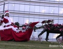 Happy Holidays from Boston Dynamics