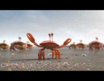 Krabai - geriausia keliauti grupėmis - reklama