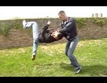Real Life Martial Arts Techniques
