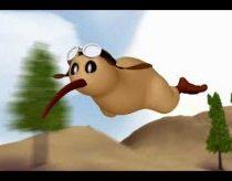 Kivi Paukštelis - animacija