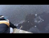 Žvejyba su fejerverkais - Švedija