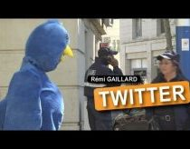 Bird that follows - Follow me on Twitter @nqtv (Rémi Gaillard)