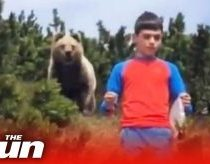 Boy miraculously escapes a dangerously close encounter with brown bear