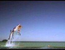 Reklama: Tamponai tampax - dabar neprateka