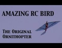 AMAZING RC BIRD!! Original RC Ornithopter!!