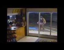 Ridiculous Break-in Attempt - FAIL of the week!