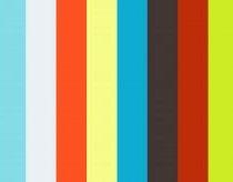 Skraidančių dronų lenktynės miške
