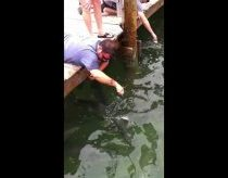 Fish Grabs Man's Arm (THE Original Video) - Tarpon Smackdown
