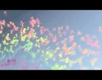 Nauja fejerverkų rūšis - dienos fejerverkai