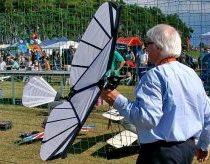 Radio bangomis valdomas paukštis - ornithopter'is