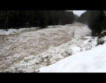 Ledo upė