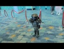 The Cutest Predator Cosplay of All Time