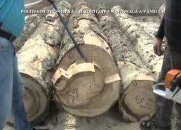 Kontrabanda Romunijoje - cigarečių kontrabanda paslėpta neįprastoje vietoje