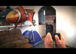 Oro plaukikai - įdomios radiovaldomos žuvys