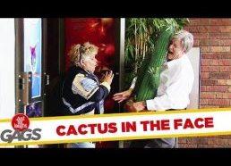 Pokštas su kaktusu ir durimis - slapta kamera