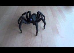 3D spausdintuvu atspausdintas voras šoka rumbą