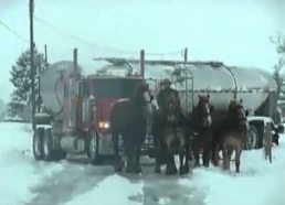 4 horses pull out a truck off the snow