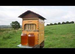 Išradimas leidžiantis lengvai iš avilio paimti medų