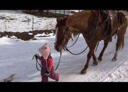 Maža mergaitė Ema vedžioja arklį Cinamoną - mielas vaizdelis