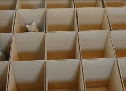 Dėžučių rojus katėms!