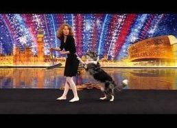 Šuns pasirodymas - Britan's got Talent 2010