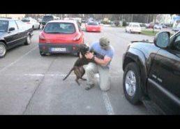 Kaip šuo pasitinka šeimininką grįžusį iš armijos