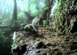 Volkswagen Beetle 2011 Super Bowl XLV television commercial