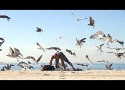 Pokštas poilsaiutojams paplūdimyje - žuvėdros puola