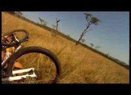 Taip gali nutikti tik Afrikoje - kalnų dviratininkas nutrenktas laukinio ožio