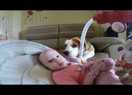 Šunelis padeda pakeisti vaikui pampersus